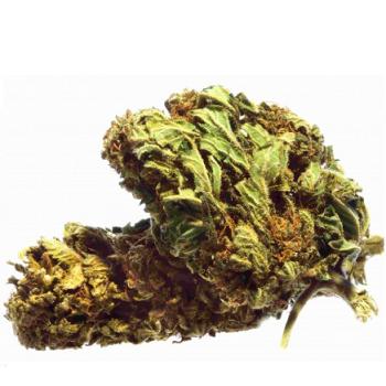 Fleur De CBD Skittelz Dragon Vert | Création Vap
